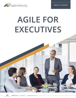 2020 Agile for Executives